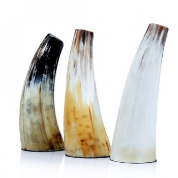 牛角花瓶-自在_NT$2,280 (2)(改800)
