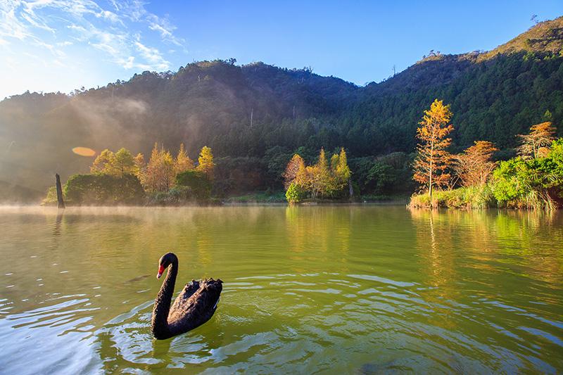圖說:明池湖自然生態環境