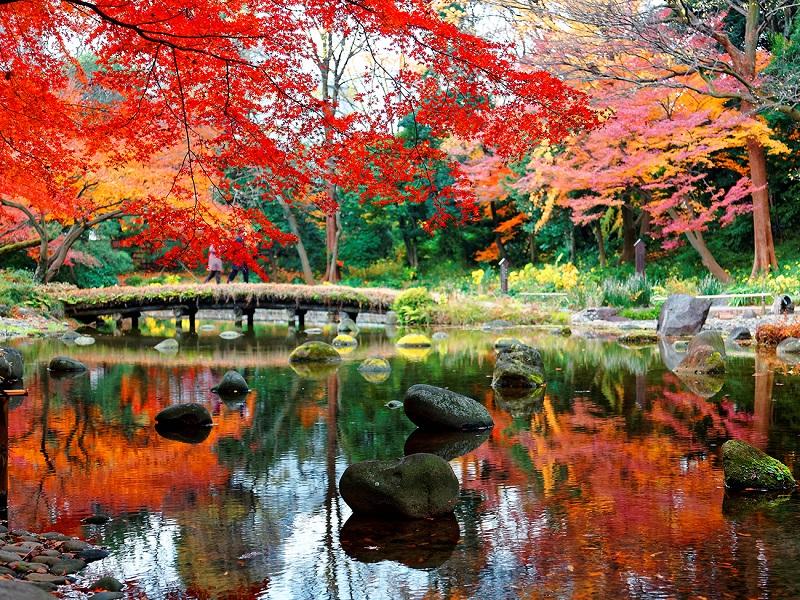 01【易遊網】赴日賞楓是國人秋季最喜愛的主題旅遊