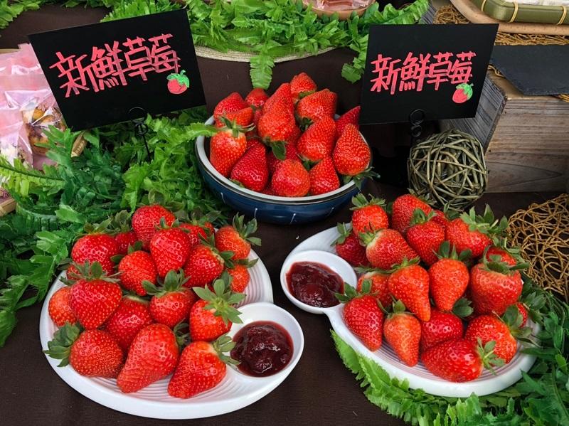 2020215內湖白石湖草莓季_200216_0030