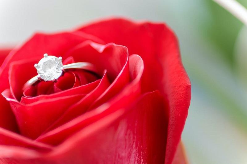 pexels-鑽戒與玫瑰