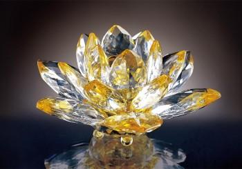【特別企劃】Lotus 伴隨成長的水晶品牌
