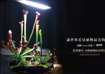 【CNFlower x ONF】跨界聯名水陸植物培育燈FLAT NANO STAND