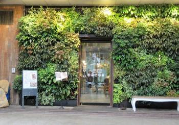 森林系美感餐廳 —Salud「梳子」川味蔬食