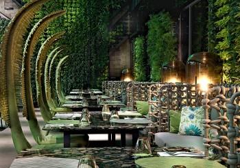 【夢想旅遊】城市中的微型森林 阿樹國際旅店的五感新慢旅