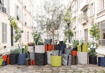 用BACSAC打造自己的城市小綠地