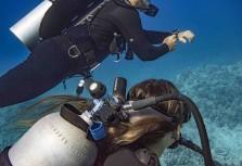 Garmin再創潛水新紀元 首創「SubWave潛聲納」突破性技術領先業界