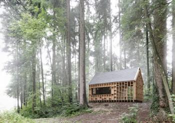 在奧地利的森林小屋中上一堂大自然的課