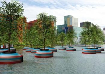 漂浮在鹿特丹旁的水上森林
