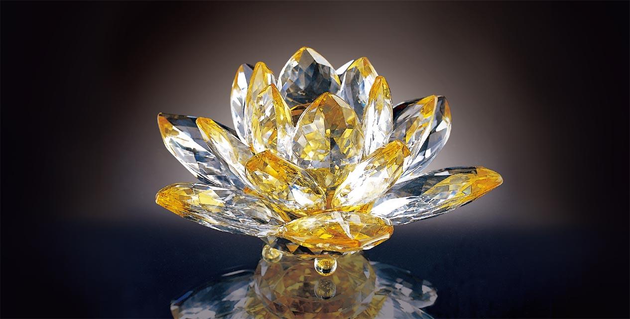 Lotus 伴隨成長的水晶品牌
